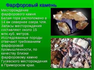 Фарфоровый камень Месторождение фарфоровогокамня Белаягора расположено в 14