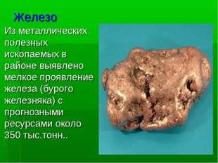Железо Изметаллических полезных ископаемых в районе выявлено мелкоепроявлен