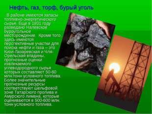 Нефть, газ, торф, бурый уголь В районе имеются запасы топливно-энергетическог