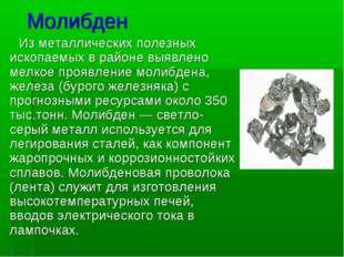 Молибден Изметаллических полезных ископаемых в районе выявлено мелкоепроявл