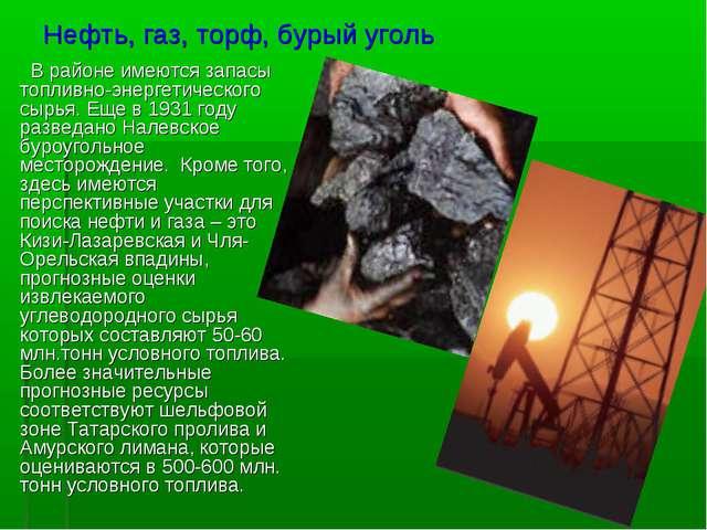 Нефть, газ, торф, бурый уголь В районе имеются запасы топливно-энергетическог...
