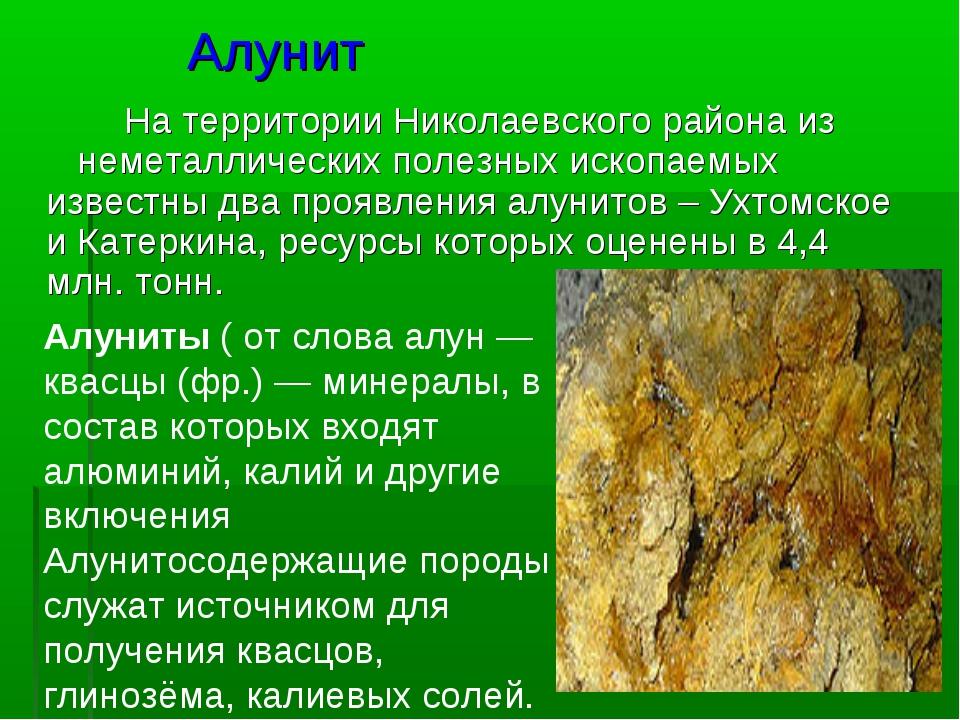 Алунит На территории Николаевского района из неметаллических полезных ископае...