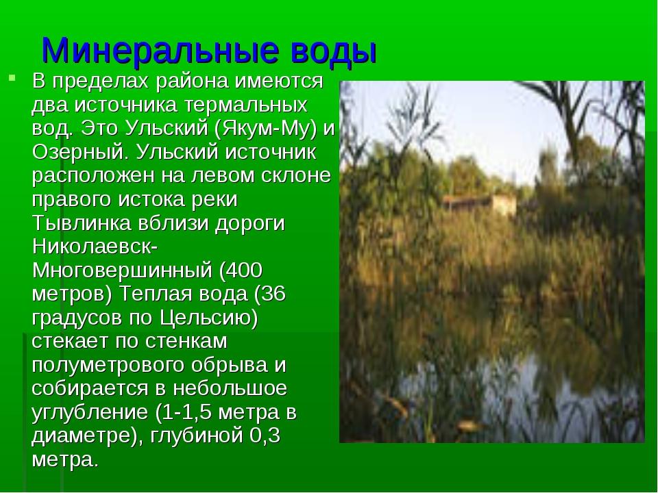 Минеральные воды В пределах района имеются два источника термальных вод. Это...