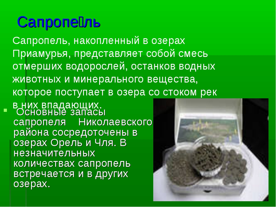 Сапропе́ль Основные запасы сапропеля Николаевского района сосредоточены в озе...