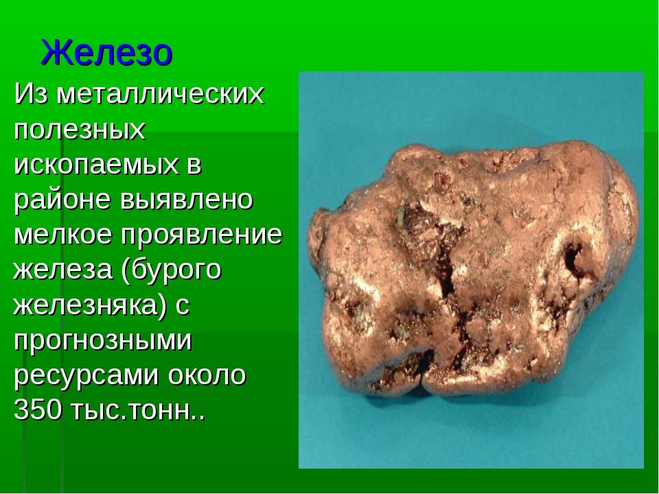 Железо Изметаллических полезных ископаемых в районе выявлено мелкоепроявлен...