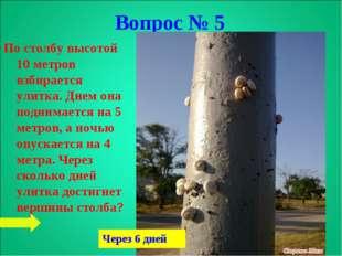 По столбу высотой 10 метров взбирается улитка. Днем она поднимается на 5 метр