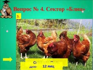 Вопрос № 4. Сектор «Блиц» 1. 2. 3. Девятый вал Сева-сто-Поль 12 яиц