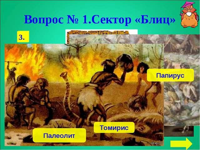 Вопрос № 1.Сектор «Блиц» 1. 2. 3. Папирус Томирис Палеолит