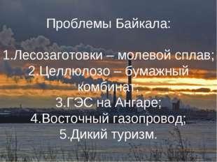 Проблемы Байкала: Лесозаготовки – молевой сплав; Целлюлозо – бумажный комбина