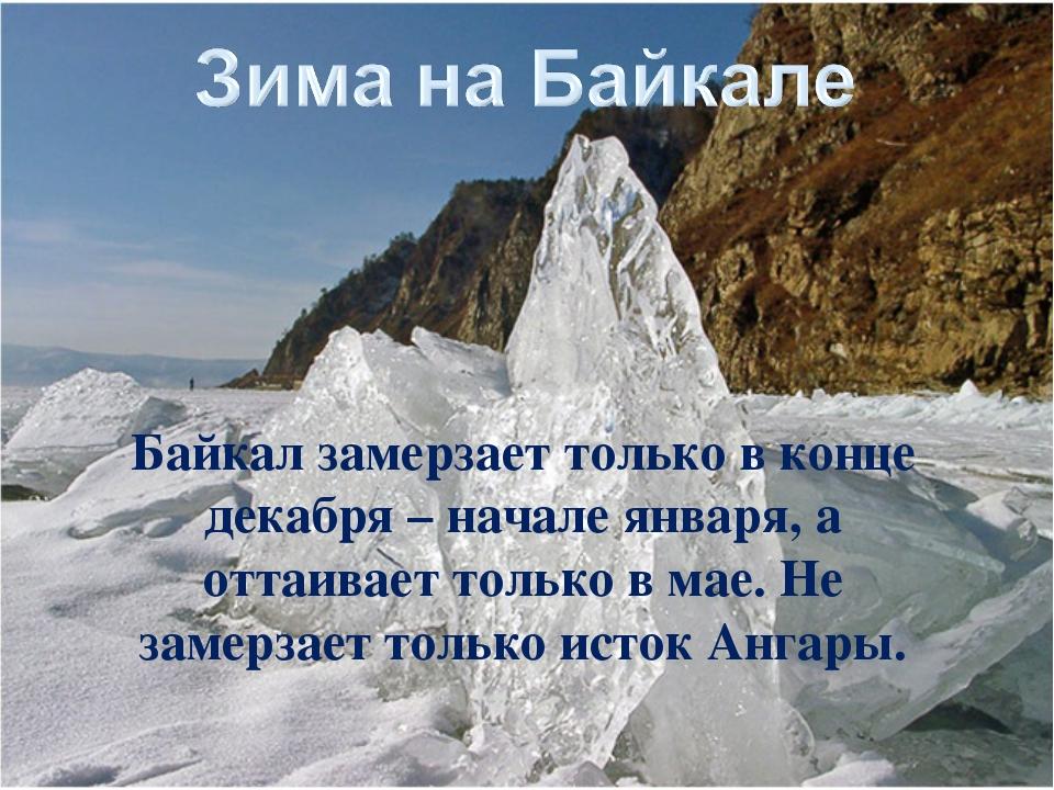 Байкал замерзает только в конце декабря – начале января, а оттаивает только в...