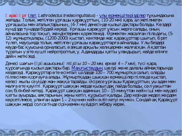 Қарақұрт(лат.Lathrodectus tredecimguttatus) -улы өрмекшітәрізділертұқымд...