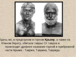 • Здесь же, в предгорном и горном Крыму, а также на Южном берегу, обитали тав