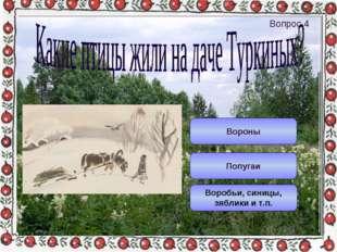 Воробьи, синицы, зяблики и т.п. Попугаи Вороны Вопрос 4