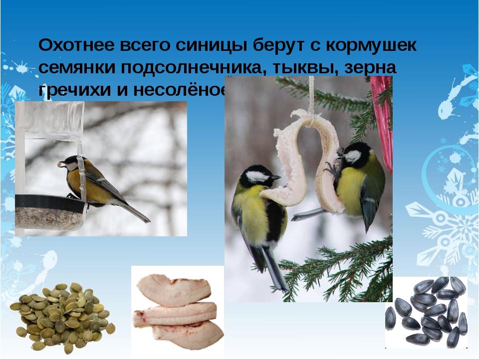 Охотнее всего синицы берут с кормушек семянки подсолнечника, тыквы, зерна гре...