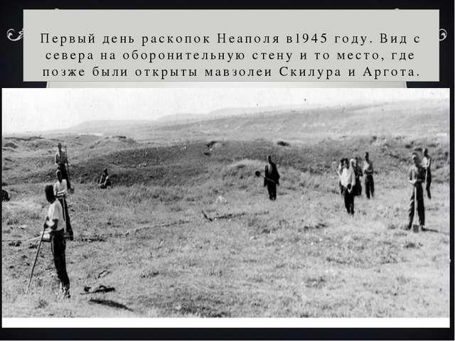 Первый день раскопок Неаполя в1945 году. Вид с севера на оборонительную стену...
