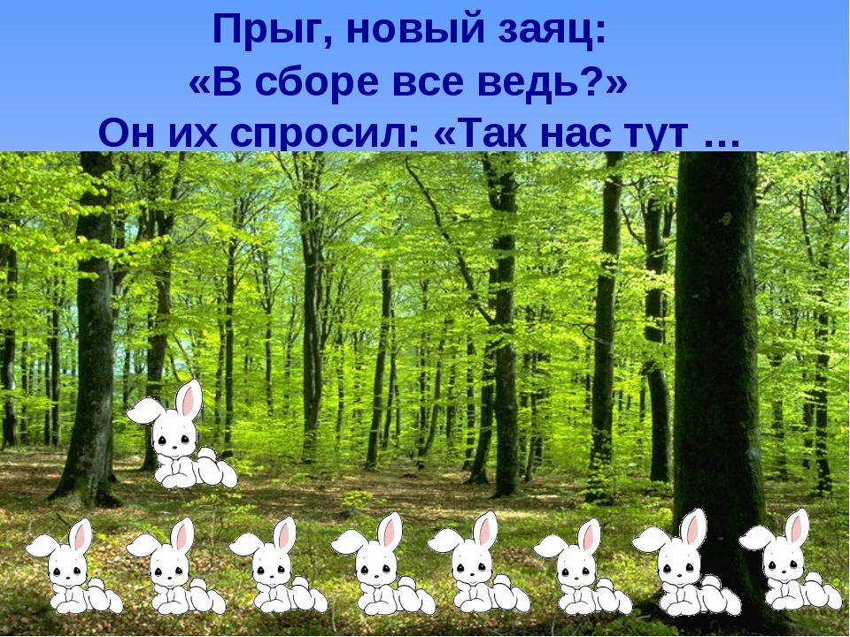 Прыг, новый заяц: «В сборе все ведь?» Он их спросил: «Так нас тут …