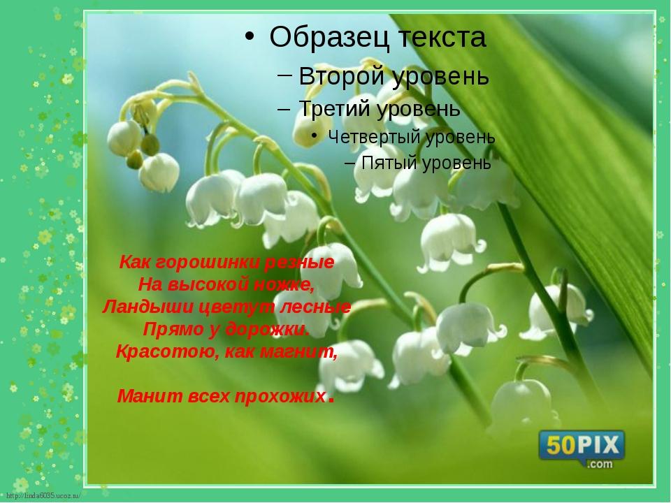 Как горошинки резные На высокой ножке, Ландыши цветут лесные Прямо у дорожки....