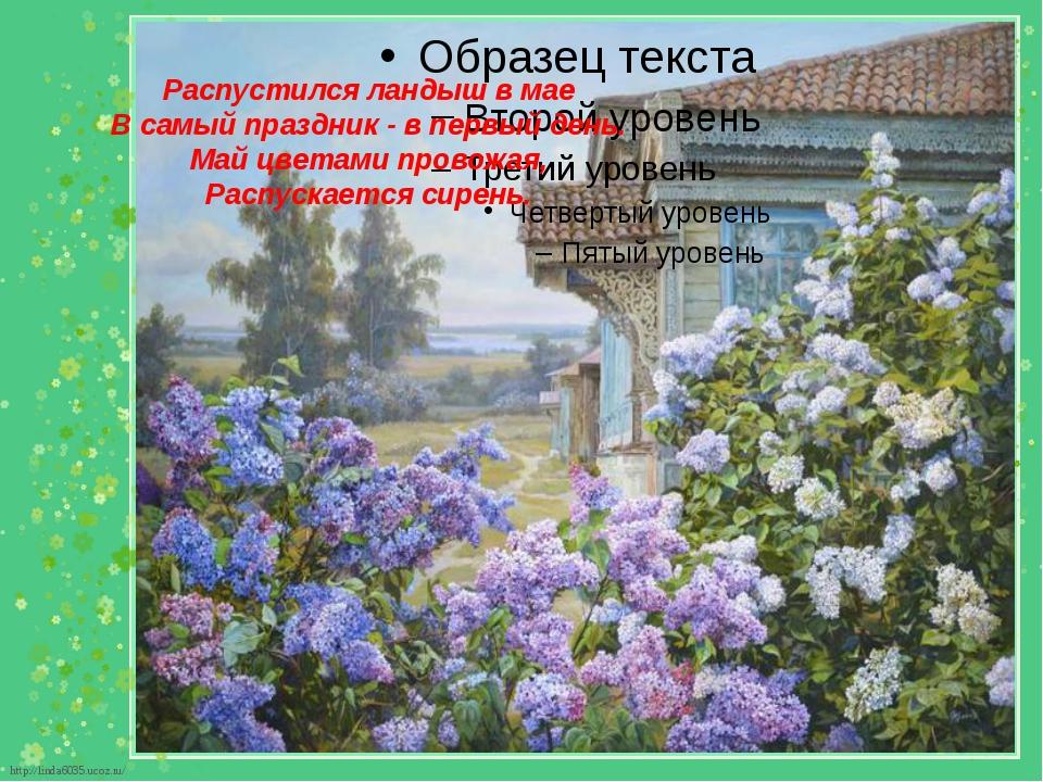 Распустился ландыш в мае В самый праздник - в первый день. Май цветами прово...