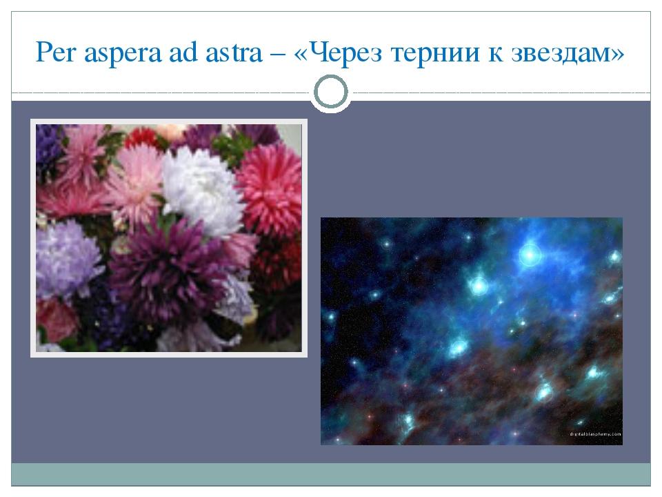 Per aspera ad astra – «Через тернии к звездам»