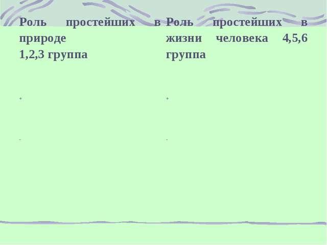 Роль простейших в природе 1,2,3 группаРоль простейших в жизни человека 4,5,6...