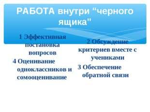 """РАБОТА внутри """"черного ящика"""" 1 Эффективная постановка вопросов 4 Оценивание"""