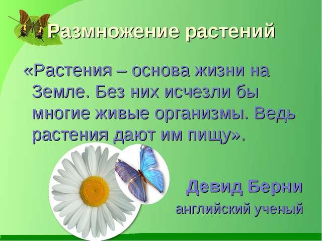 Размножение растений «Растения – основа жизни на Земле. Без них исчезли бы мн...