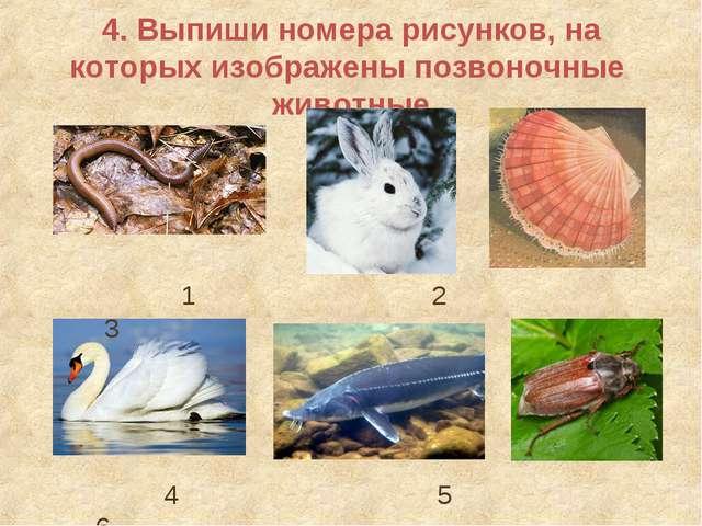 4. Выпиши номера рисунков, на которых изображены позвоночные животные 1 2 3 4...