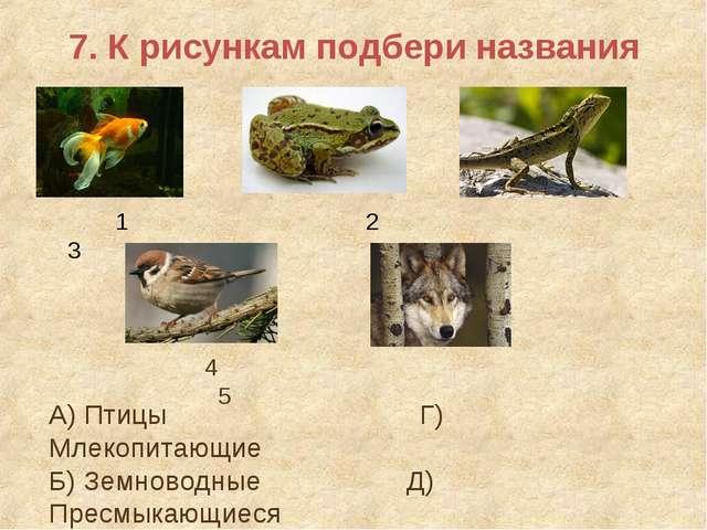 7. К рисункам подбери названия 1 2 3 4 5 А) Птицы Г) Млекопитающие Б) Земново...