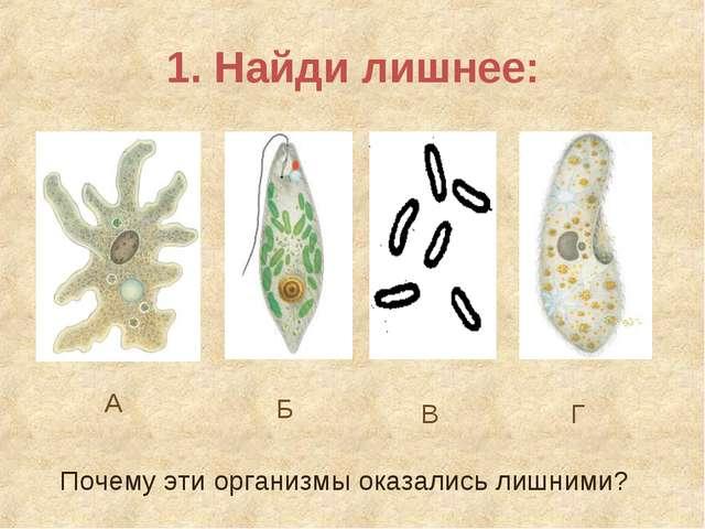 1. Найди лишнее: А Б В Г Почему эти организмы оказались лишними?