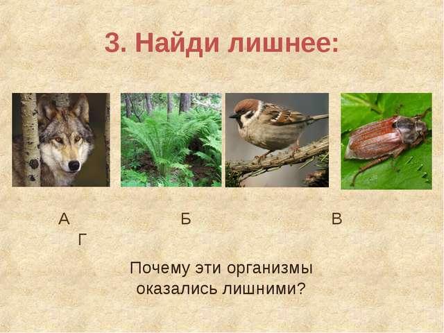 3. Найди лишнее: А Б В Г Почему эти организмы оказались лишними?