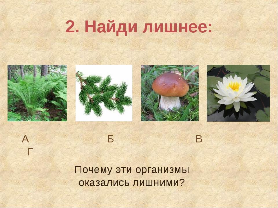 2. Найди лишнее: А Б В Г Почему эти организмы оказались лишними?