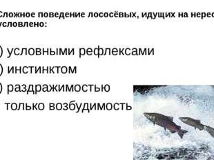 8. Сложное поведение лососёвых, идущих на нерест, обусловлено: а) условными р