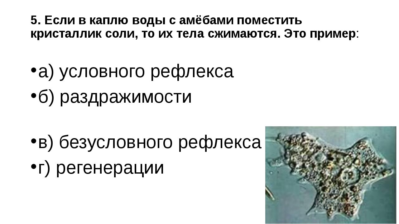 5. Если в каплю воды с амёбами поместить кристаллик соли, то их тела сжимаютс...
