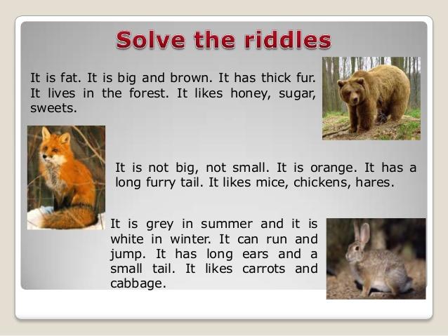 http://image.slidesharecdn.com/random-140407120031-phpapp02/95/wild-animals-3-638.jpg?cb=1396890071