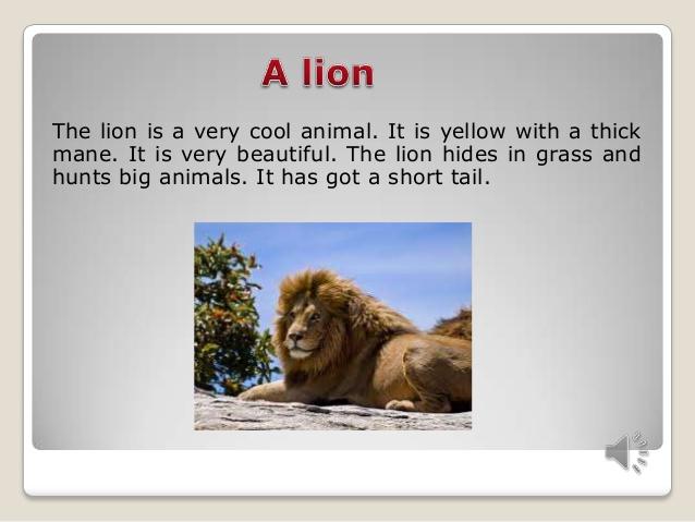 http://image.slidesharecdn.com/random-140407120031-phpapp02/95/wild-animals-8-638.jpg?cb=1396890071