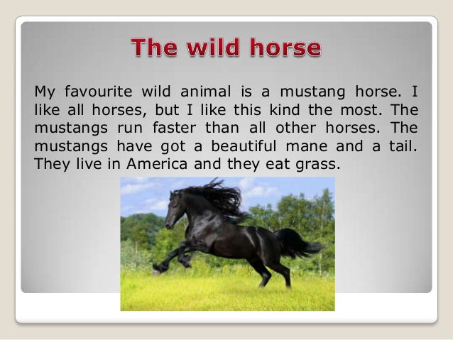 http://image.slidesharecdn.com/random-140407120031-phpapp02/95/wild-animals-9-638.jpg?cb=1396890071