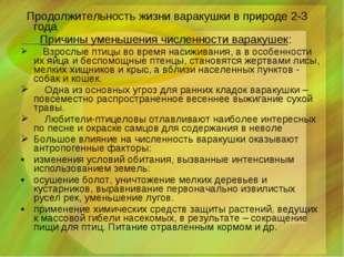 Продолжительность жизни варакушки в природе 2-3 года Причины уменьшения числ