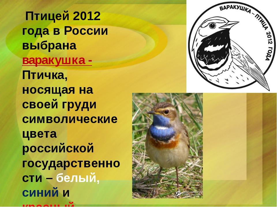 Птицей 2012 года в России выбрана варакушка - Птичка, носящая на своей груди...