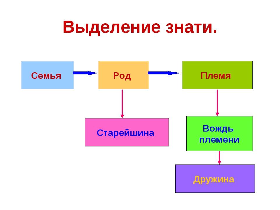 Выделение знати. Семья Род Племя Старейшина Вождь племени Дружина