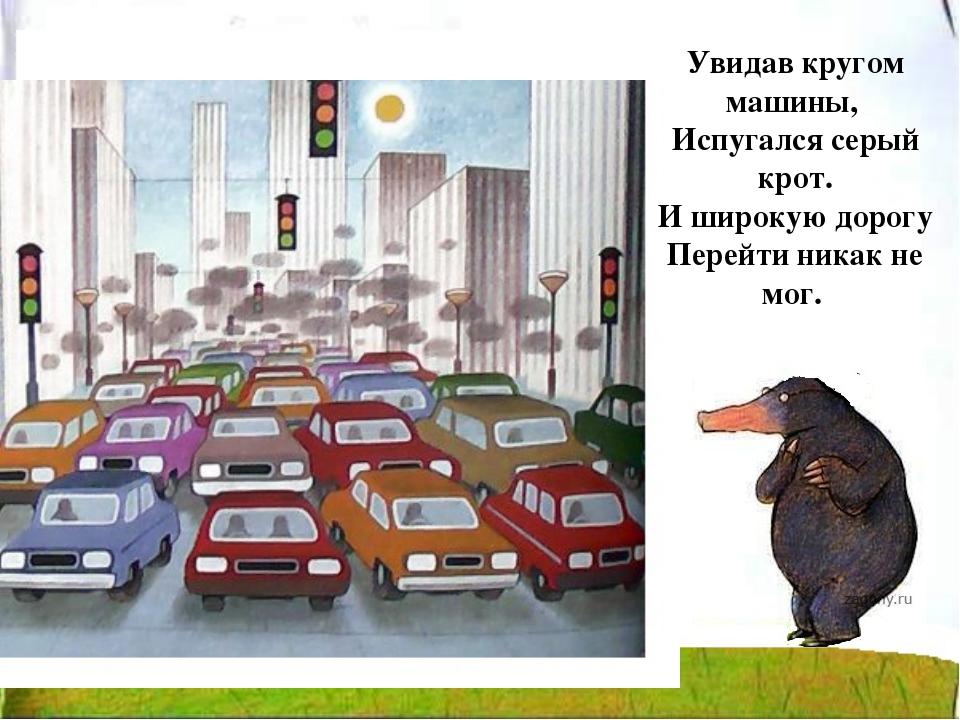 Увидав кругом машины, Испугался серый крот. И широкую дорогу Перейти никак н...