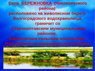 Село БЕРЕЖНОВКА (Николаевского района) расположено на живописном берегу Волг