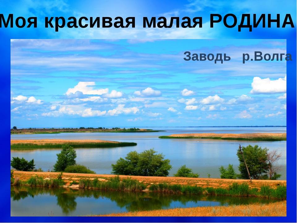 Моя красивая малая РОДИНА Заводь р.Волга