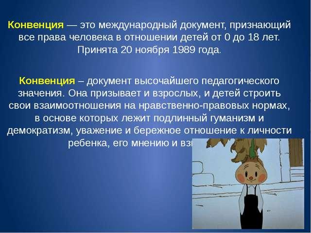 Конвенция — это международный документ, признающий все права человека в отнош...
