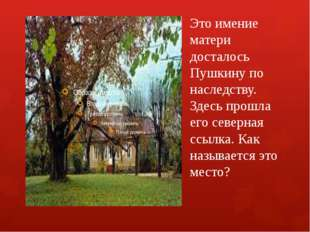 Это имение матери досталось Пушкину по наследству. Здесь прошла его северная