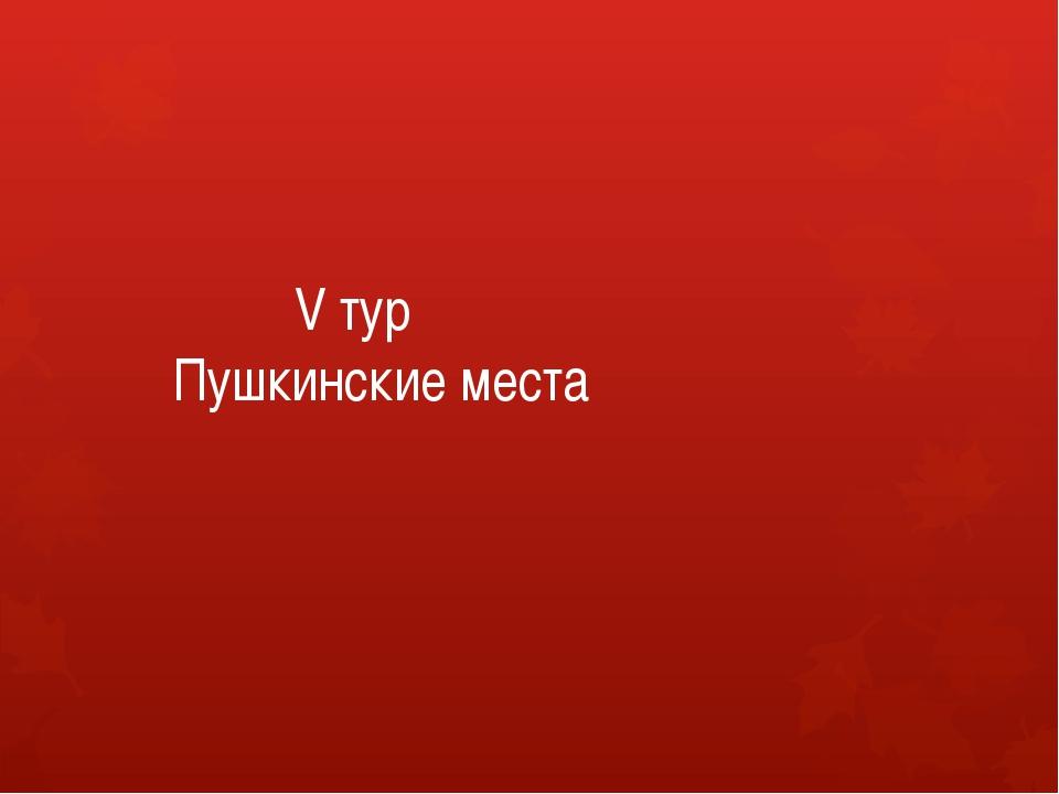 V тур Пушкинские места