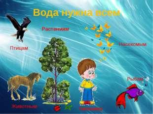 Вода нужна всем Растениям Рыбам Птицам Животным Насекомым Человеку