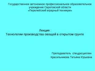 Преподаватель спецдисциплин Красильникова Татьяна Юрьевна Государственное ав