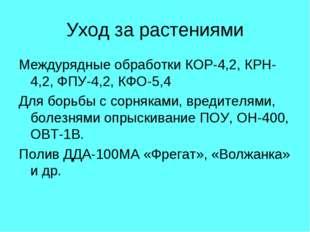 Уход за растениями Междурядные обработки КОР-4,2, КРН-4,2, ФПУ-4,2, КФО-5,4 Д