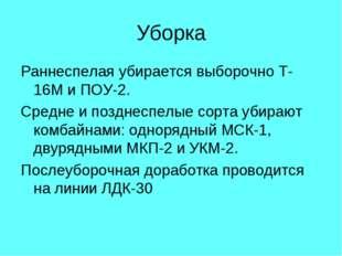 Уборка Раннеспелая убирается выборочно Т-16М и ПОУ-2. Средне и позднеспелые с