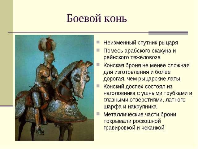 Боевой конь Неизменный спутник рыцаря Помесь арабского скакуна и рейнского тя...
